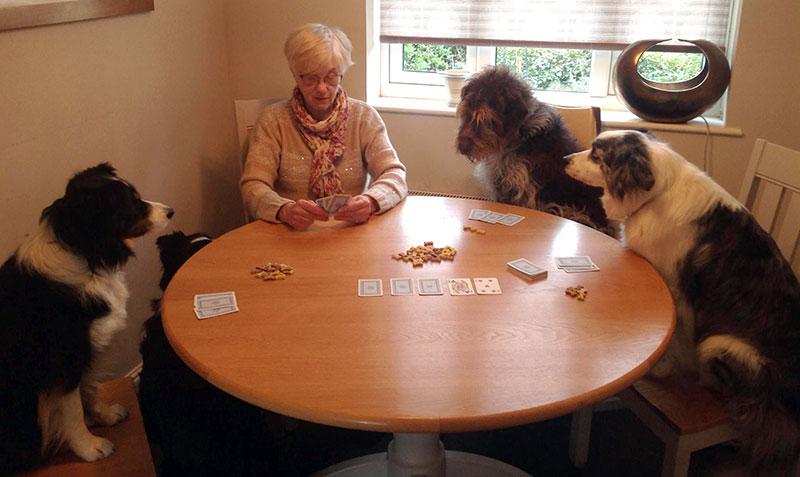 Card playing